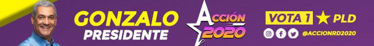 Movimiento político del sector externo en apoyo a la candidatura presidencial de @gonzalo2020rd. Intégrate a la Acción, con Gonzalo, RD 🇩🇴 avanza !!!
